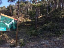 Franja perimetral Fussimanya